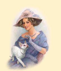 Линейка сухих кормов для кошек стаут